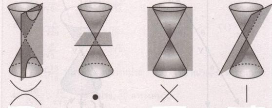 จากซ้ายไปขวา รูป (d), (e), (f) และ (g)